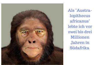 Als -Austra-lopithecus africanus- lebte ich vor zwei bis drei Millionen Jahren in Südafrika